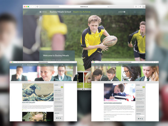Bushey Meads Website Design